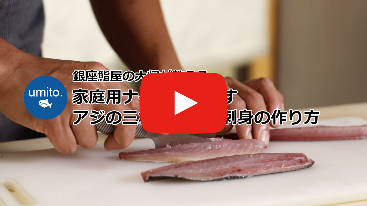 家庭用ナイフでおろす アジの三枚おろしと刺身の作り方